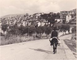 BOLTANA ESPAGNE 1950 Photo Amateur Format Environ 7,5 X 5,5 Cm - Lugares