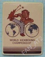 USSR / Badge / Soviet Union / UKRAINE. Boxing. Kickboxing. Martial Arts. World Championship. Brown Bear. 1989 - Wrestling