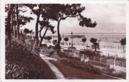33 - Arcachon ( Gironde )  Vue Sur Le Boulevard Promenade Et La Plage ( Carte Glacée ) - Arcachon