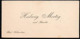 C6484 - Hedwig Mertig - Bad Schandau - Visitenkarte - Visitenkarten