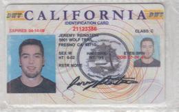 USA CALIFORNIA DRIVING LISENCE - Otras Colecciones