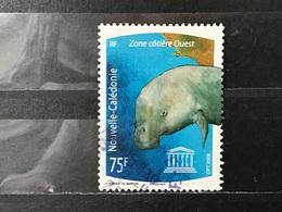 Nieuw-Caledonië / New Caledonia - Lagunes (75) 2008 - Neukaledonien