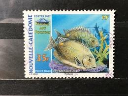 Nieuw-Caledonië / New Caledonia - Vissen (35) 2007 - Usados