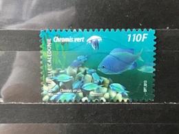 Nieuw-Caledonië / New Caledonia - Lagunes (110) 2013 - Nieuw-Caledonië