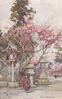 Jardin Japonais,oilette - Fantaisies
