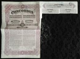 CONCORDIA . SOCIETE ANONYME ROUMAINE POUR L'INDUSTRIE DU PETROLE . 250 LEI . 1924 . - Azioni & Titoli