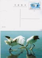 North Korea 2014  WWF Red-crowned Crane Postal Pre-stamped Card - W.W.F.