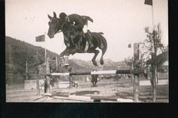 LOT350....PERPIGNAN ....6 CARTES PHOTO CONCOURS HIPPIQUE ...A DURAN PHOTOGRAPHE - Postcards