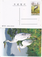 North Korea 2009 Birds- Anthropoides Paradisea Pre-stamped Post Card - Grues Et Gruiformes