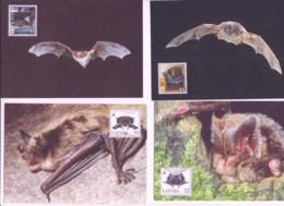WWF - LATVIA - 2008 - BATS  SET OF 4 MAXI CARDS,STAMPS ALONE CAT £12 - Maximum Cards