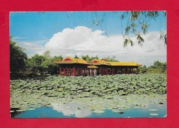 CARTOLINA VG SINGAPORE - YU HWA YUAN CHINESE GARDEN - 10 X 15 - ANN. 1980 - Singapore