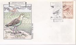 BIRDS FDC COVER RO 1993, SPECIAL POSTMARK POR NATURA ORADEA,  BIRD CALDRIS ALPINA - Birds