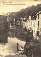 Carte Postale Ancienne GRAND FORMAT(17 X 12)  De LUXEMBOURG - L'Alzette & Rue Des Tanneurs ... // CARTE  REFORME N° 21 - Luxembourg - Ville