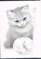 Chat- Cat -  Katze-  Poesje Vis -gatto- - Chats