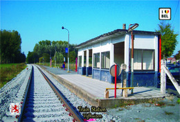 Set 15 Cartes Postales, Transports, Gares, Belgium, Vijfhuizen (Erpe-Mere), Vijfhuizen Train Station - Stazioni Senza Treni