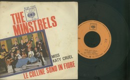 THE MINSTRELS -MISS KATY CRUEL -LE COLLINE SONO IN FIORE -DISCO VINILE 45 GIRI - Sonstige - Italienische Musik