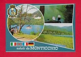 CARTOLINA NV ITALIA - Saluti Da MONTICCHIO (PZ) - Vedutine Multivue - Rionero In Vulture - 10 X 15 - Saluti Da.../ Gruss Aus...