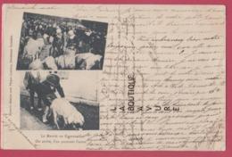 29 - Le Marché En Cornouailles-On Arrive L'un Poussant L'autre---cochons---animé----precurseur - France