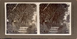 Indonesia, Java, Keasberry, Neville, Malang, Bandoeng, Oud Merdika - Stereoscoop