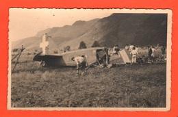 Aeronautica Incidente Aereo 1941 Plane Crash Crash Aérien Accidente De Avión  Flugzeugabsturz Aereo Fiat Cr 25 ? - Aviazione