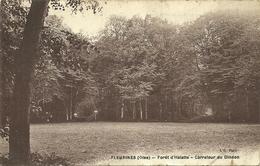 (FLEURINES )( 60 OISE ) FORET D HALATTE . CARREFOUR DU DINDON - Frankreich