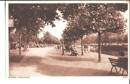 Bedford. Embankment. B 8151.Photochrom London And Tunbridge Wells - Bedford