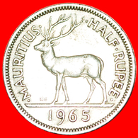 + STAG: MAURITIUS ★ 1/2 RUPEE 1965 KEY DATE! LOW START ★ NO RESERVE! - Mauritius