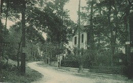 CPA  ROYAN  17 : Avenue Des Rosiers  1928 - Royan