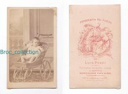 Photo Cdv D'un Bébé Dans Une Poussette Tricycle, Fotograpfia Del Fuego, Luis Pozzi, Buenos Aires, Album Seguin - Anciennes (Av. 1900)