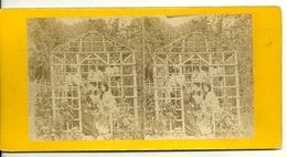 PHOTO STEREOTYPE SUR SUPPORT CARTON / SERRE A FLEURS - BOURGEOISES ET JARDINIERS - Anciennes (Av. 1900)