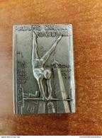 PNF CONI GIL OND MVSN GUF Bologna Anno XVIII Raduno Ginnico Spilla Sports Ventennio Milizia - Gymnastics