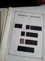 Lot N° 606 NELLE CALEDONIE Collection Sur Pages D'albums Neufs ** T.B. - Collections (en Albums)