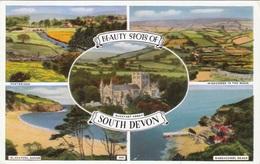 BEAUTY SPOTS OF SOUTH DEVON - Karte Gel.1961 - England