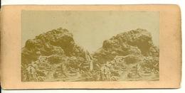 PHOTO STEREOTYPE SUR SUPPORT CARTON / BATTERIE BISEAU - Anciennes (Av. 1900)