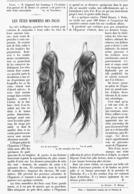 LES TETES MOMIFIEES Des INCAS 1900 - Technical