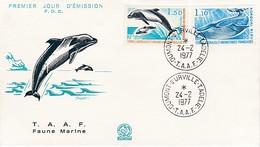 TAAF PREMIER JOUR 19776 64 + 65 Rorqual Et Dauphin 24-02-1977 Terre Adélie - FDC