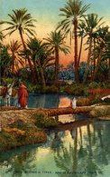 AFRIQUE  SCENES ET TYPES  ALLEE DE PALMIERS DANS L'OASIS - Scènes & Types