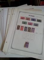 Lot N° 603 TCHAD Niger Senegal Collection Sur Pages D'albums Neufs * Timbres Collés A 50 % - Stamps
