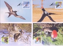WWF - CHRISTMAS ISLAND -  2010 - WWF FRIGATE BIRD   SET  OF 4 MAXI CARDS, - Cartoline Maximum