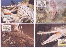 WWF -  PANAMA - 1997 - WWF - AAMERICAN CROCODILE   SET  OF 4 MAXI CARDS, - Maximum Cards