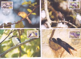 WWF -  COOK ISLANDS - 2005 - WWF - BIRDS    SET  OF 4 MAXI CARDS, , STAMPS ALONE CAT £20 - Maximum Cards