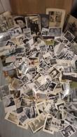 Gros Lot De Plus De 600 Photos Anciennes . - Personnes Anonymes