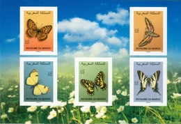 2019 - Papillons - Marokko (1956-...)