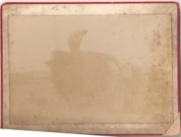 Binnenhalen Hooi Boer Hond (regio Melle ? Gent ?) : Foto Op Hard Karton Photo Carton (9 X 12 Cm) - Melle