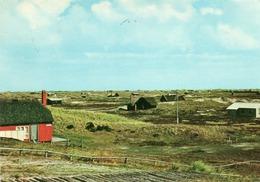 DANMARK-PARTI FRA BJERREGAAD-HOLMSLANDS KLIT-FROM BJERREGAARD-HOLMSLAND DUNES- VIAGGIATA -F.G - Danimarca