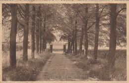 Stevoort Bij Hasselt , Middelbare Landelijke Hulshoudschool , Ingang - Hasselt