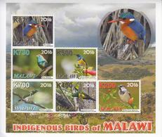 2016 Malawi Indigenous Birds Oiseaux   Miniature Sheet Of 8 MNH - Malawi (1964-...)