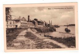 Niel - Cimentfabrieken En Rupelzicht - Niel