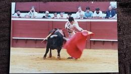 PHOTO  CORRIDA TAUROMACHIE TORERO  FORMAT 9.5 CM PAR 14 CM - Photographs
