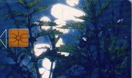 REPUBLICA CHECA. FLORA - Nettle. C204A, 41/09.97. (042) - Flores
